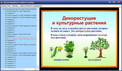 igri-okruzhayushiy-mir-5-klass-demo